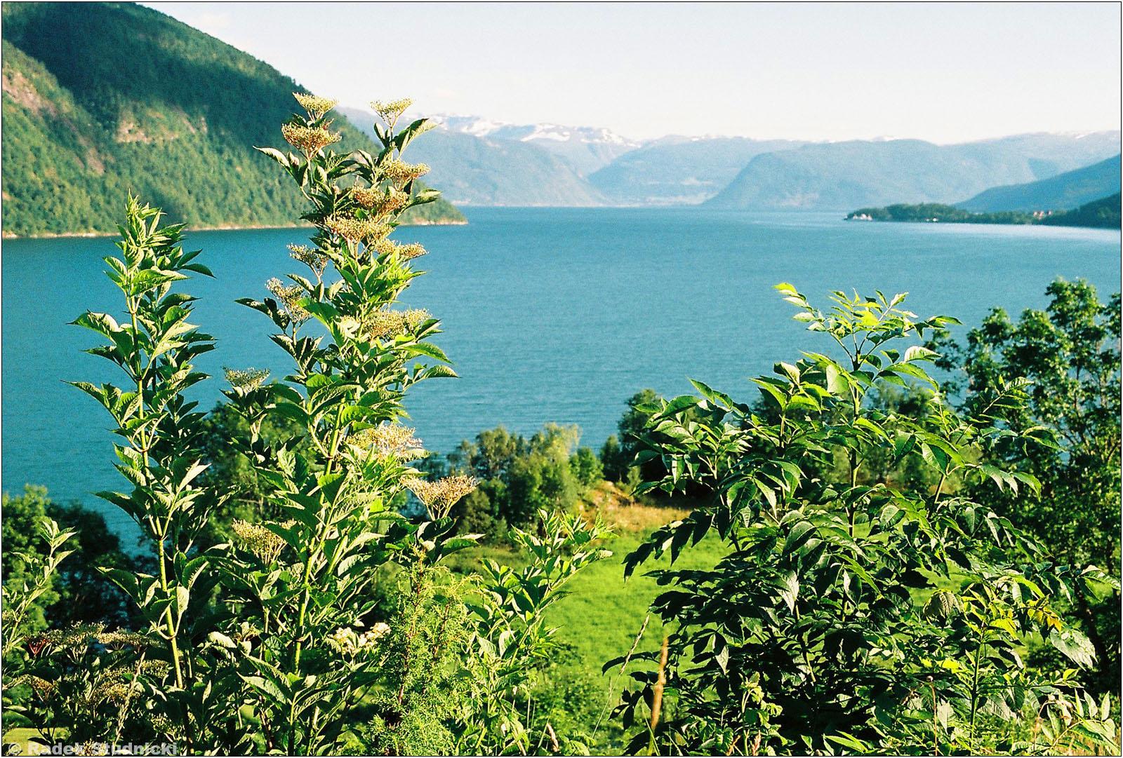Menes, Norwegia