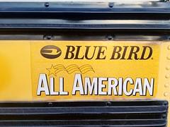 3956 - 2002 Blue Bird All American RE - Hillsborough County School Bus