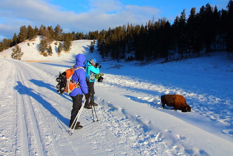 IMG_7684 Tower Fall Ski Trail
