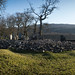 Kilmartin Glen - Temple Wood by AJ Mitchell