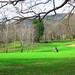 Bonita mañana para disfrutar del golf
