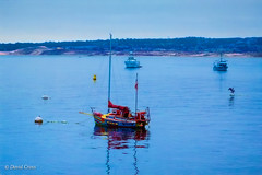 A Monterey Bay Moment