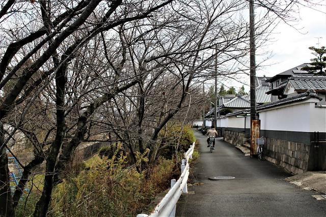 choenji-gosyuin002