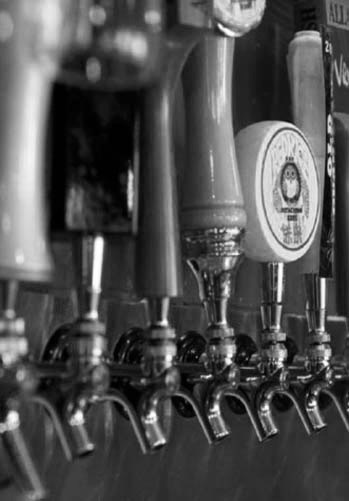 Craft Beer in Marlborough