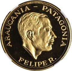 Araucania-Patagonia 100 Pesos obverse