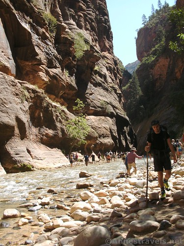 Trying to avoid the crowds in the lower part of the Zion Narrows of Zion National Park, Utah