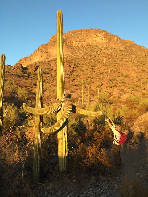 Picacho Peak Linda reaching out
