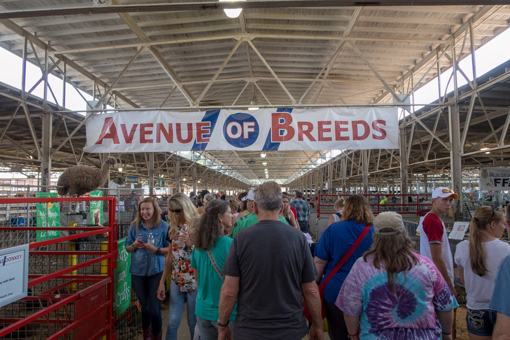 Avenue of Breeds sign at Iowa State Fair