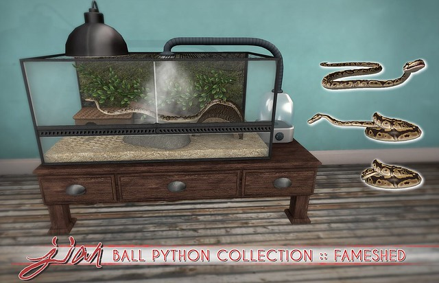 JIAN Ball Python Collection ( FaMESHed )