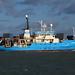 IMG_1915 - Franklin - Hythe Pier - 01.02.18