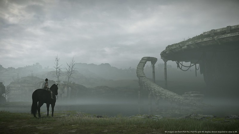 SOTC_Screen_Disclaimer_PS4_PGW17_00008_1516201729