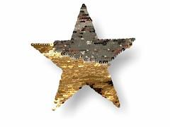Wechsel Pailletten Applikation STERN, silber/gold