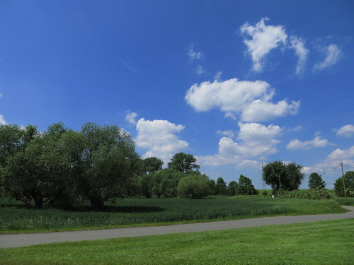 20170601 05 176 Regia Wolken Bäume Feld Weg
