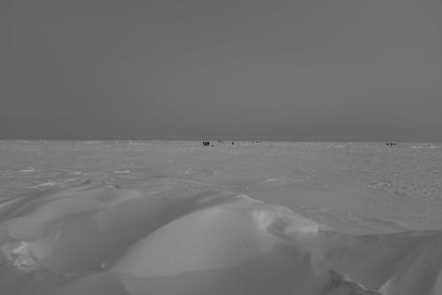 Стародубское 10-02-2018 (16)