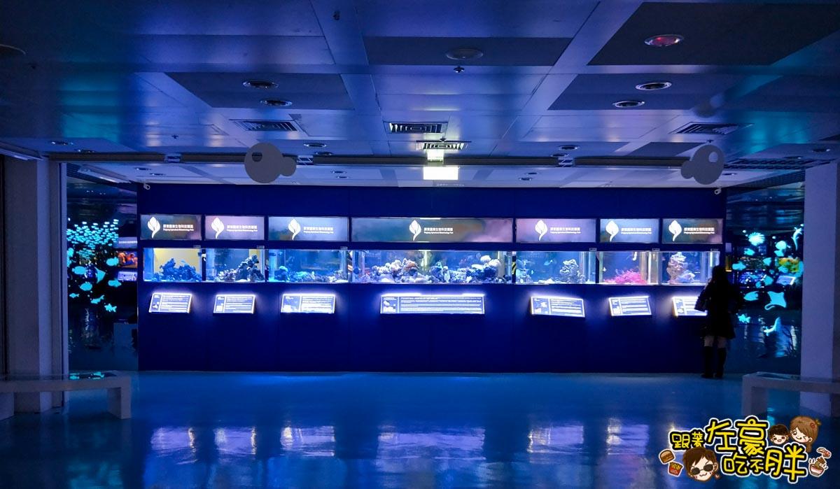 屏東生技園區國際級水族展示廳-19