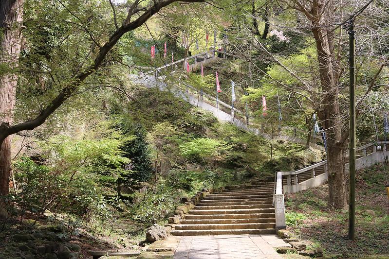 20170415_鎌倉アルプス_0126.jpg