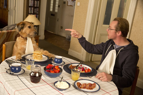 Absolutely Anything - screenshot 3