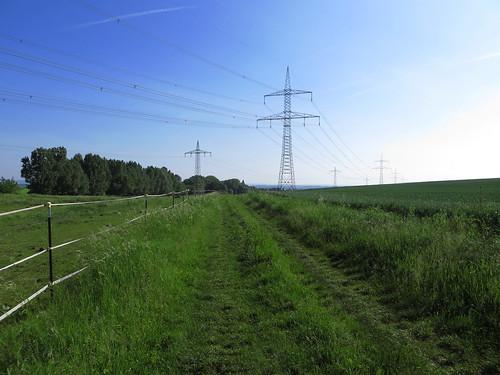 20170601 05 043 Regia Strommaste Weg Wald Wiese