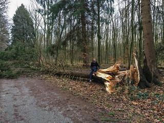 Rath-Forsbacher Weg