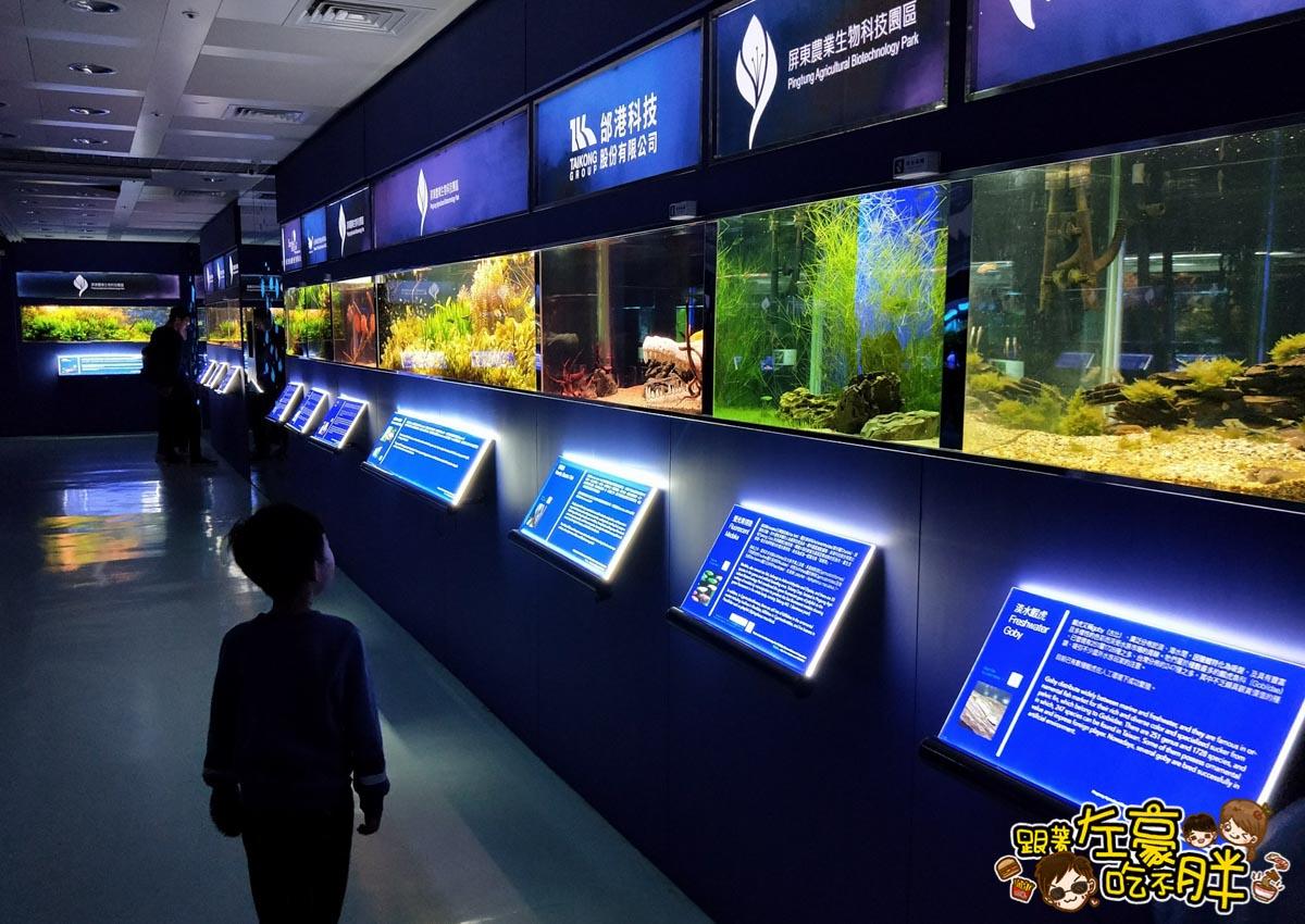 屏東生技園區國際級水族展示廳-27
