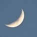 Tonight's Moon Before Sunset by dlv1