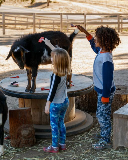 Animal Rescue Farm VII, Canon EOS 5DS, Canon EF 24-70mm f/2.8L II USM