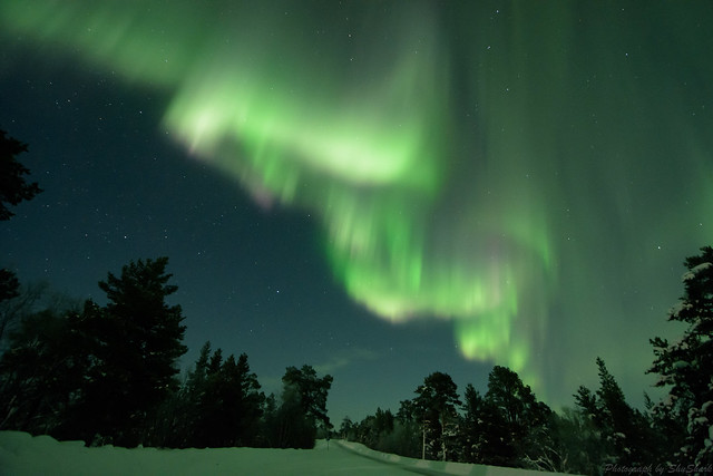 20180222-Finland-DSC_6496