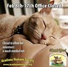 #vacation #MardiGras #cats Our office is closed now thru Feb 17, 2018.