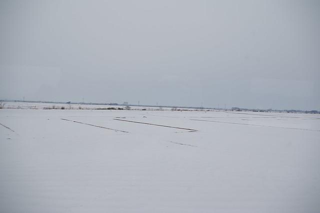 An endless white land
