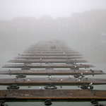 Foggy Preston Docks