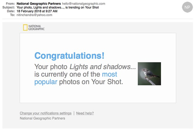 Your photo Lights and shadows is trending on Your Shot
