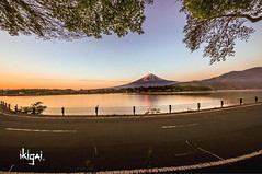 Watching the sunrise of the majestical Mt. Fuji always reminds me of good times with friends. @ninsche1 @kiwi_wanderer1.  I take my photos to remind me of my past adventures, the stories they tell & where I've been. For me, that's my joy, my ikigai.