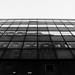 Windows por flea_14