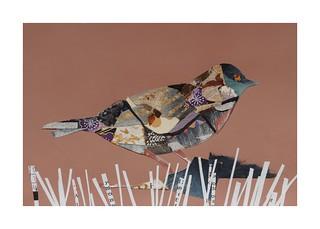 Bird #20