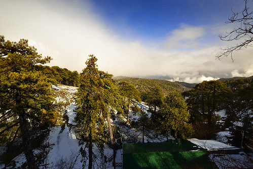 cyprus troodos bennevisrestaurant landscape pinetrees snow