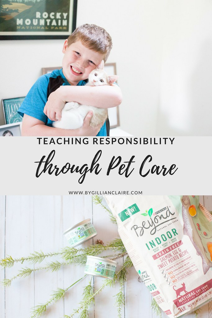 Responsibility with Pets2