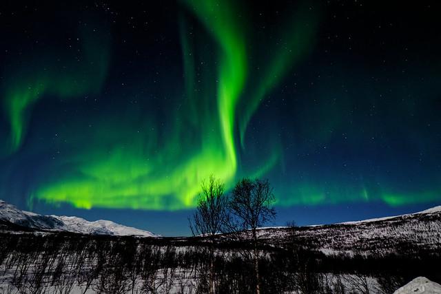 Aurora at Silsand
