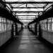 Sunday Train Travel