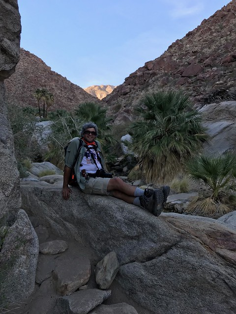 Borrego Springs - Pierre on rocks