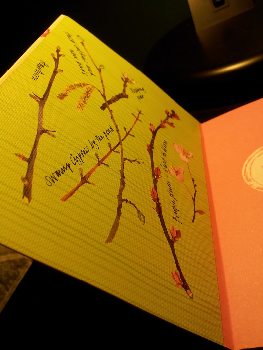 cherry-blossom-inside-front-cover-left