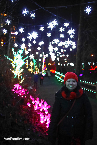 Lights at Lafarge 2017