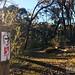 Heysen Trail - Mount Crawford (13km)