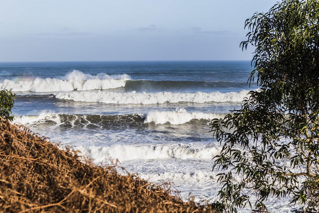 Helechos, eucaliptos y olas gigantes