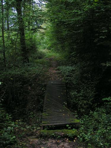 20070829 11510 0705 Jakobus Bretter gebogen Matschbrücke