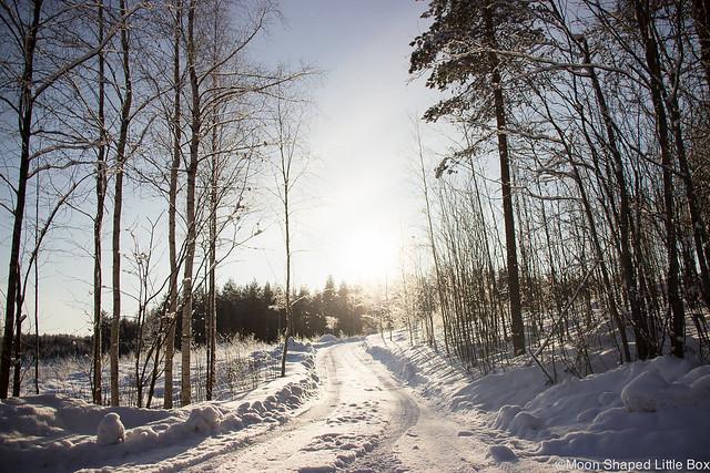 talviaurinko, vastavalo, aurinko, talvi, helmikuu