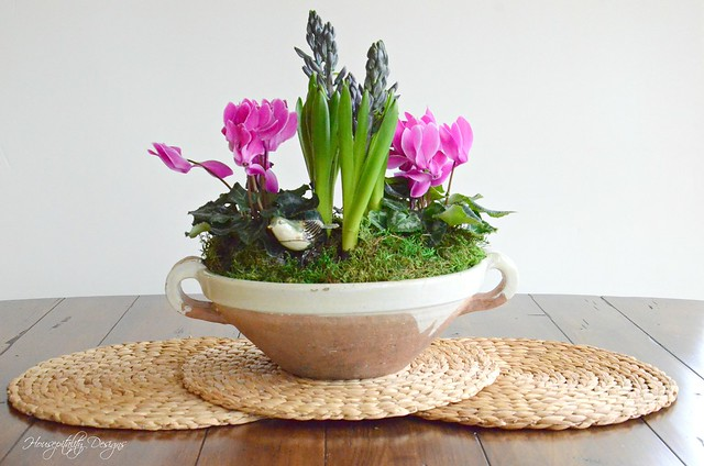 Dish Garden-Housepitality Designs-8