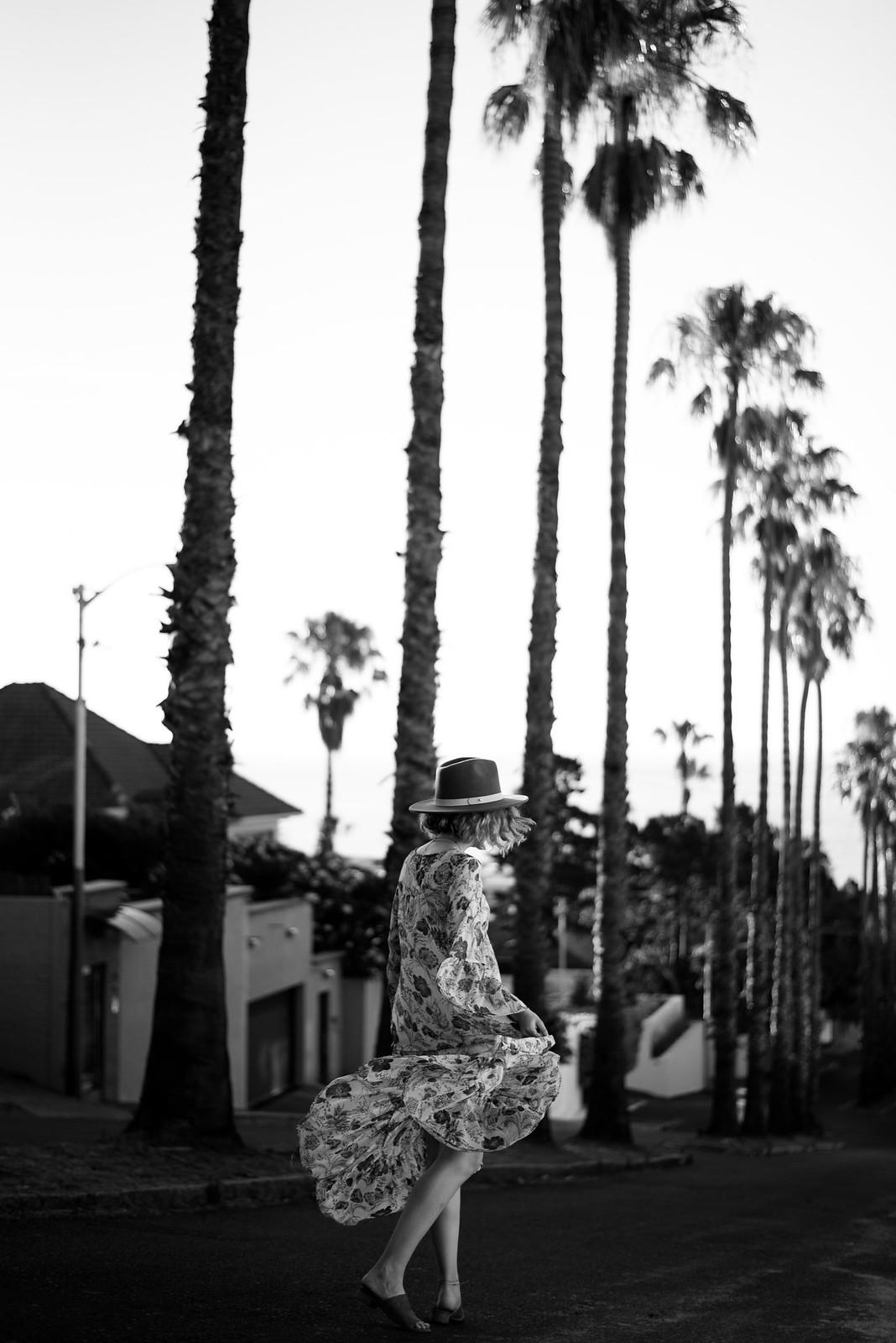 Black and White Palm Trees on juliettelaura.blogspot.com
