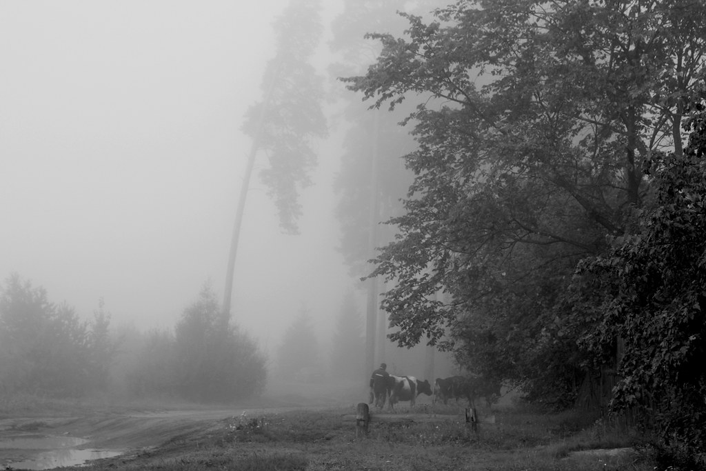 August-21_1bw