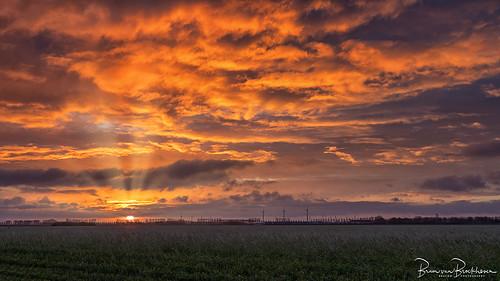 February sunrise in the polder