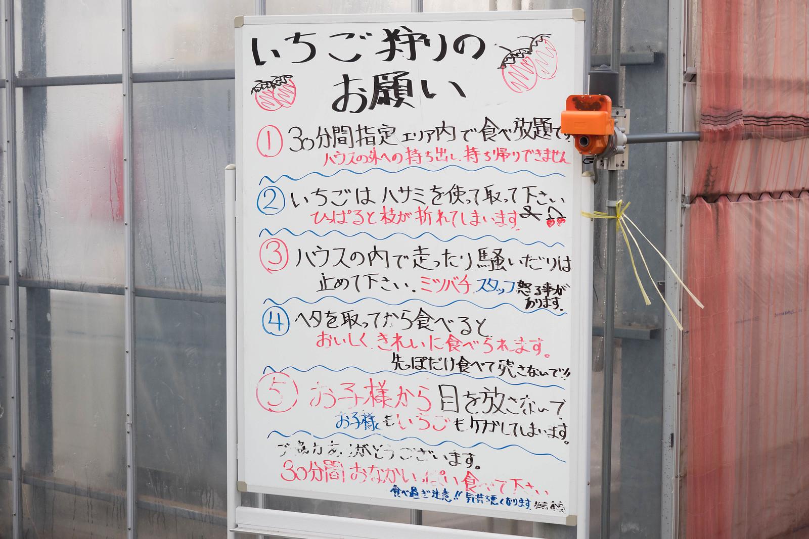 mukasa_farm-34